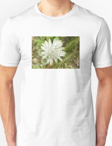 woodland flowers T-Shirt