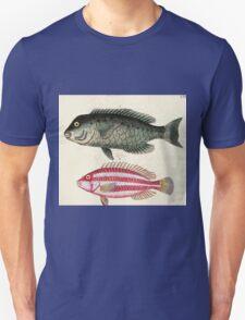 Naturgeschichte in Bildern mit erläuterndem Text E Strack 1820 Lief 4 Fish 072 T-Shirt
