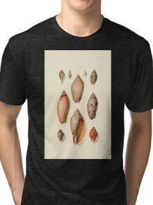 Thesaurus conchyliorum Monographs of genera of shells George Brettingham Sowerby 1887 V1-V5 368 Tri-blend T-Shirt