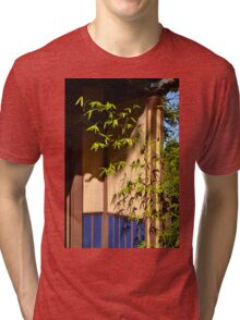 bamboo in a doorway Tri-blend T-Shirt