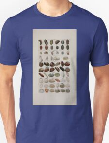 Index testaceologicus an illustrated catalogue of British and foreign shells 008 T-Shirt