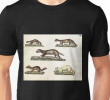 Naturgeschichte in Bildern mit erläuterndem Text E Strack 1820 Lief 1 Mammals 013 Unisex T-Shirt