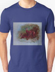 British Mammals Archibald Thorburn 1921 V2 017 Roe Deer T-Shirt