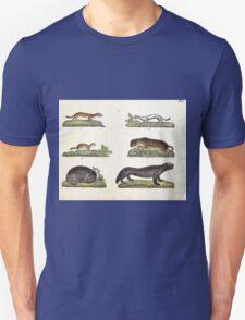 Naturgeschichte in Bildern mit erläuterndem Text E Strack 1820 Lief 1 Mammals 014 T-Shirt