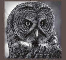 BW Great Grey Owl Baby Tee