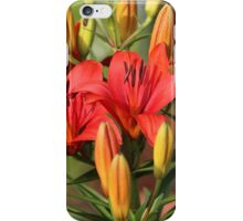 First Spring Lilies iPhone Case/Skin
