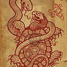 Tortoise v snake by Meerkatsu