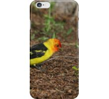 Male Western Tanager iPhone Case/Skin