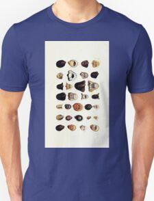 Thesaurus conchyliorum Monographs of genera of shells George Brettingham Sowerby 1887 V1-V5 115 T-Shirt