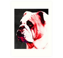 Southern Dawg By Sharon Cummings Art Print