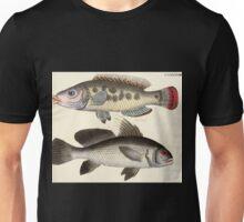 Naturgeschichte in Bildern mit erläuterndem Text E Strack 1820 Lief 4 Fish 098 Unisex T-Shirt