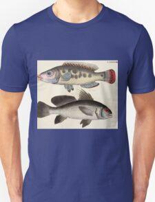 Naturgeschichte in Bildern mit erläuterndem Text E Strack 1820 Lief 4 Fish 098 T-Shirt