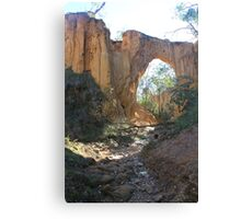Golden Gully Canvas Print