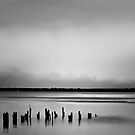 Black and White Photography Calendar by wallarooimages