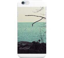 Into The Lake iPhone Case/Skin