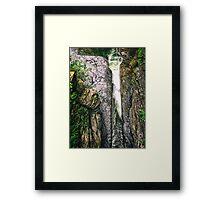 Treman Current Framed Print