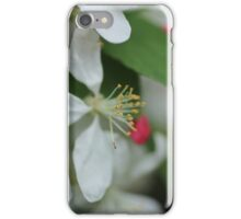 White Little Flowers iPhone Case/Skin