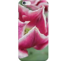 A Bed of Purple Tulips iPhone Case/Skin