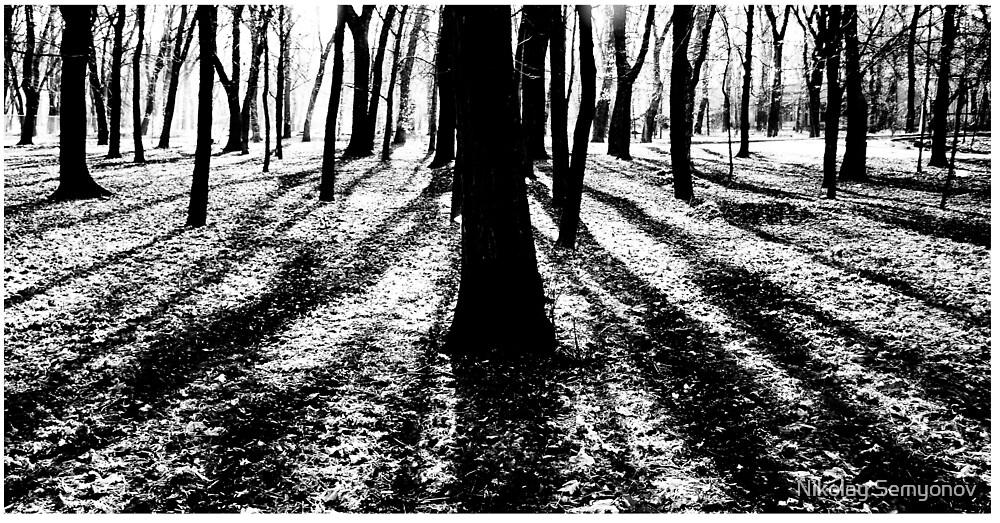 Low Shadows by Nikolay Semyonov