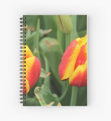 Red and Yellow Tulips Spiral Notebook