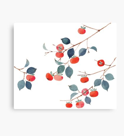 Persimmon Harvest Canvas Print