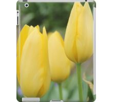 Yellow Buds of Tulips iPad Case/Skin