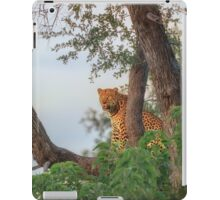 Leopard's Waterside Perch iPad Case/Skin
