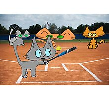 Cats Play Playing Softball! Photographic Print