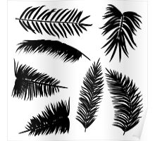 Palm Leaves silhouettes Poster