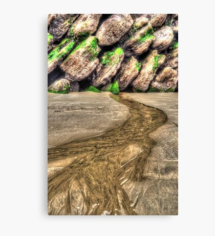 River from Nowhere Canvas Print