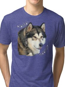 Products with breeds of dogs, Alaskan Malamute Tri-blend T-Shirt