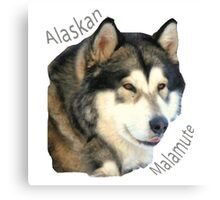 Products with breeds of dogs, Alaskan Malamute Canvas Print