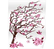 Japanese cherry tree | Árbol del cerezo japonés Poster