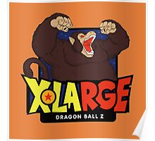 X-Large x Dragon Ball Poster