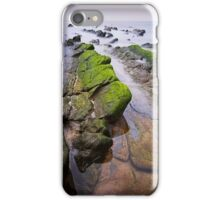 Chasing the Dragons iPhone Case/Skin