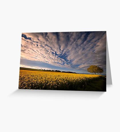 Dizziness of Spring Greeting Card