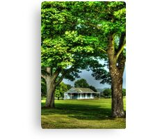Anyone for Cricket? Canvas Print