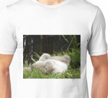 Two Cygnets fast asleep Unisex T-Shirt