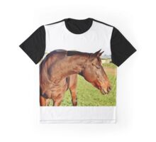 Mare in the paddock Graphic T-Shirt