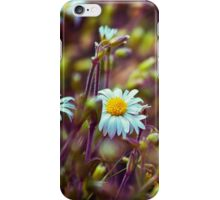 Daisy Daisy iPhone Case/Skin