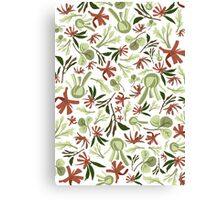 Aniseed and Fennel Canvas Print