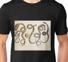 Naturgeschichte in Bildern mit erläuterndem Text E Strack 1820 Lief 3 Reptiles 024 Unisex T-Shirt