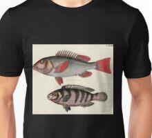 Naturgeschichte in Bildern mit erläuterndem Text E Strack 1820 Lief 4 Fish 083 Unisex T-Shirt