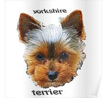 Printing dogs - Yorkshire Terrier Poster