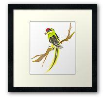 Parrot on a branch Framed Print