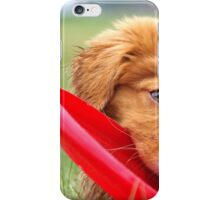 Toller Puppy with Frisbee iPhone Case/Skin