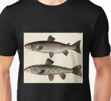 Naturgeschichte in Bildern mit erläuterndem Text E Strack 1820 Lief 4 Fish 124 Unisex T-Shirt