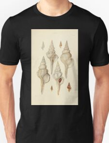 Thesaurus conchyliorum Monographs of genera of shells George Brettingham Sowerby 1887 V1-V5 511 T-Shirt