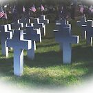 Remember Those Who Died For Our Freedom (read description) by Marie Sharp