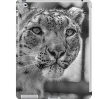 Snow Leopard (3) iPad Case/Skin